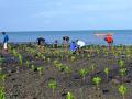Gestion durable des zones côtières de l'océan Indien.